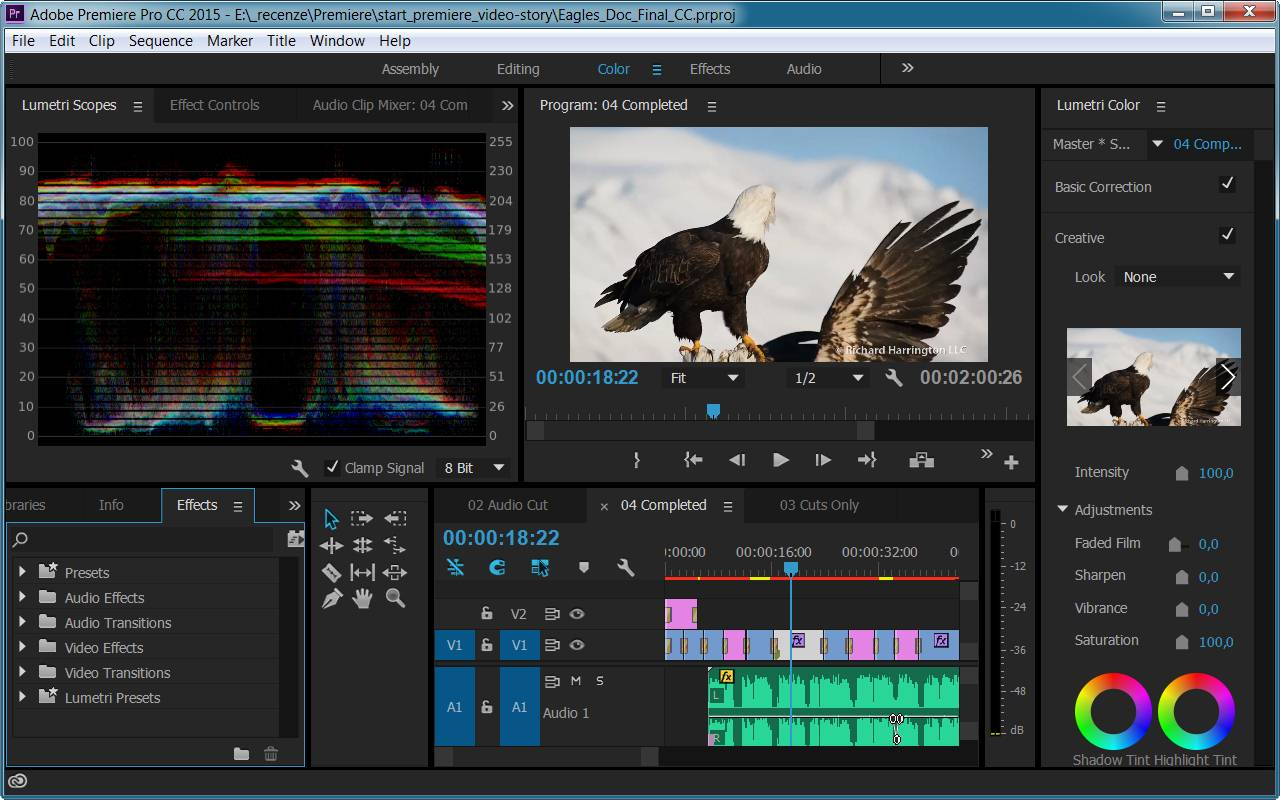 how to take a snapshot in adobe premiere pro